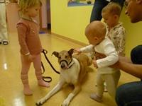canisterapie na dětském oddělení